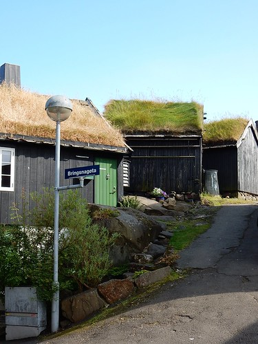 Sod Roofs