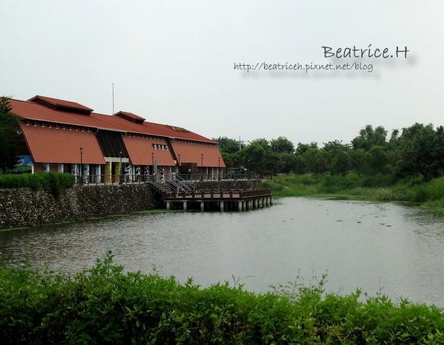 荷蘭村。池