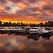 Fiery Sunrise LE over Boston Skyline, Charles River, and Yachts - Cambridge, Massachusetts USA by Greg DuBois Photography