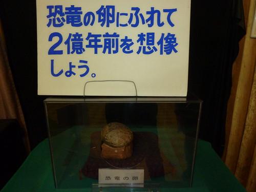 恐竜の卵@草津熱帯圏