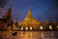 Shwedagon 00811