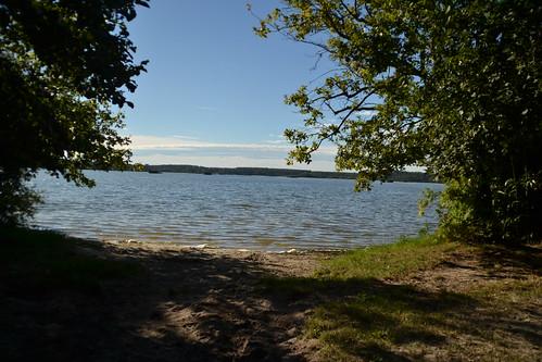 038 - l'étang blanc