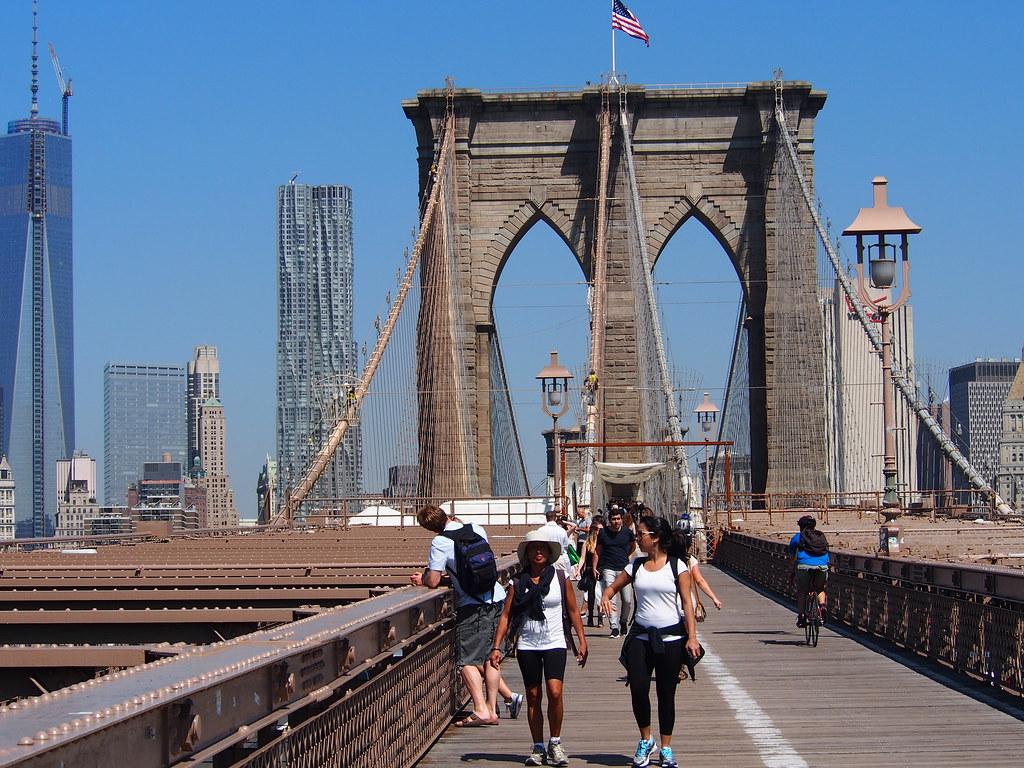 New York (533)