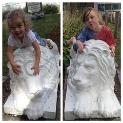 Lion sister bookends. @ctbeardsleyzoo