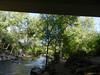 CreekAugust13-2014  :   DSCN2803