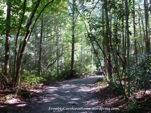 September 20 hike -4