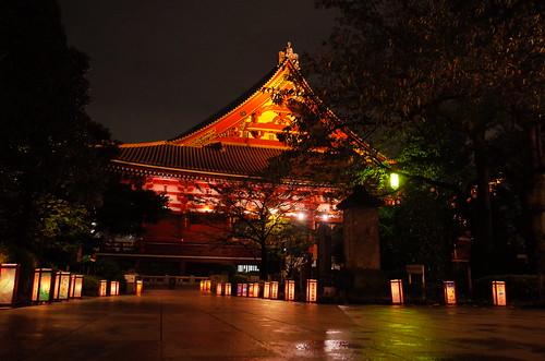 Asakusa lantern night 04
