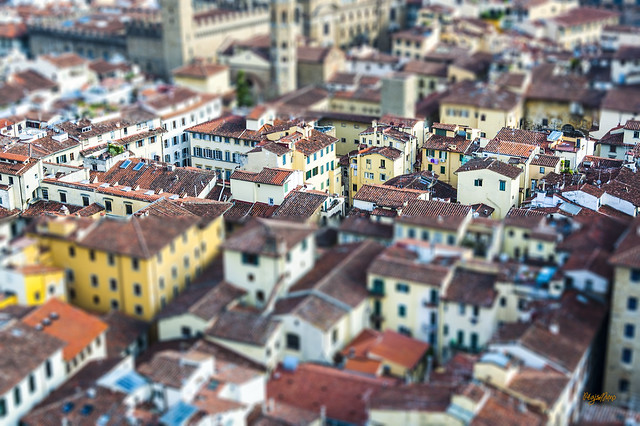 week 5 : TILT SHIFT_Florence