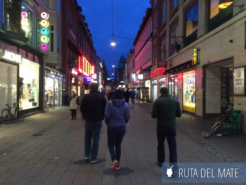 Copenhague-Dinamarca-Ruta-del-Mate-56