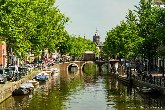 Canal Singel