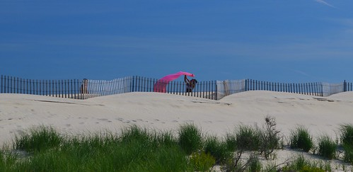 pink beach fireisland