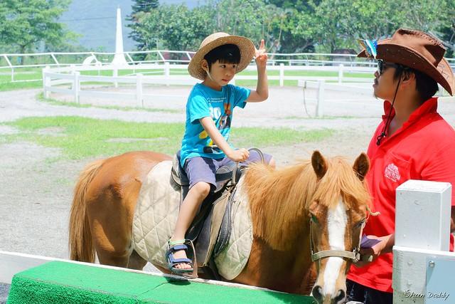 Yeah! Horse Riding