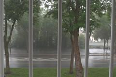 52 in 2014 - 3 # Rain