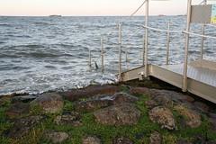 Cuxhaven_Nordsee_Juli_2014_13