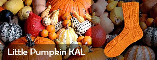little pumpkin kal