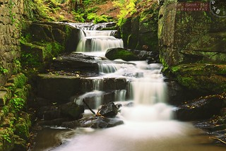Lumsdale Falls, quiet and peaceful as the Brook rushes down the rocks.