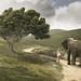 Baby Elephant Walk by ShutterJack