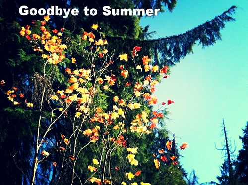 goodbye to summer