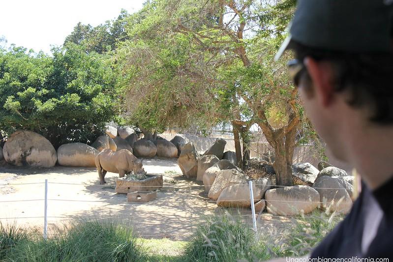 Safari Park San Diego