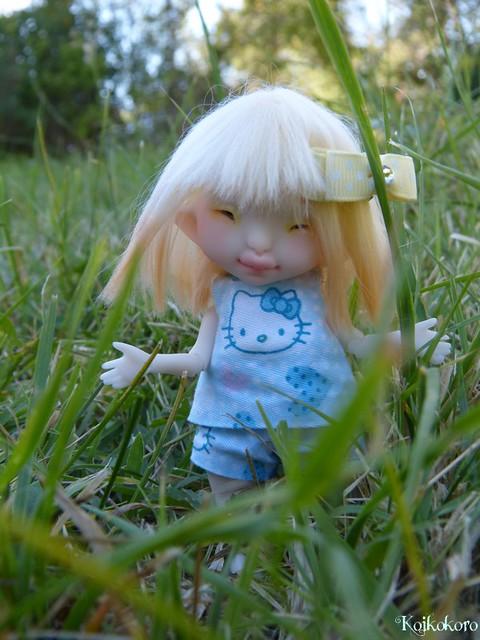 Les tinies de Koikokoro~photos en vrac - Page 6 15040061357_742488f1fa_z