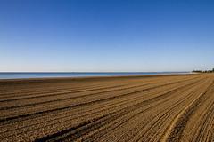 Groomed Neshotah Beach