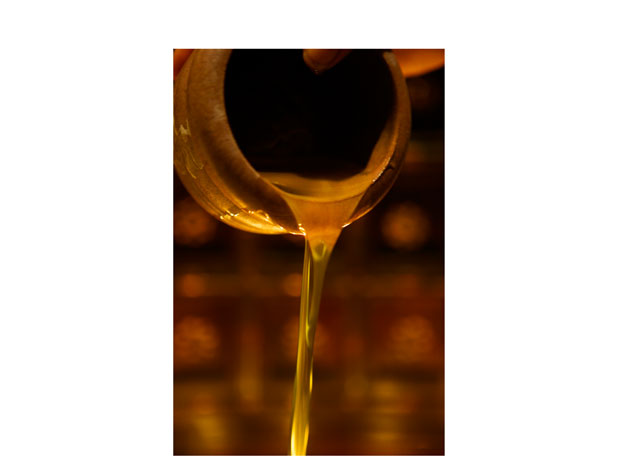 wild_argan_oil_texture-33