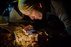 Researching insects during CAVES 2014