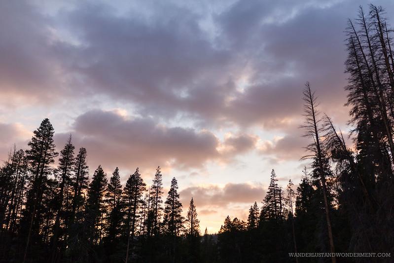 Camping along Bear Creek
