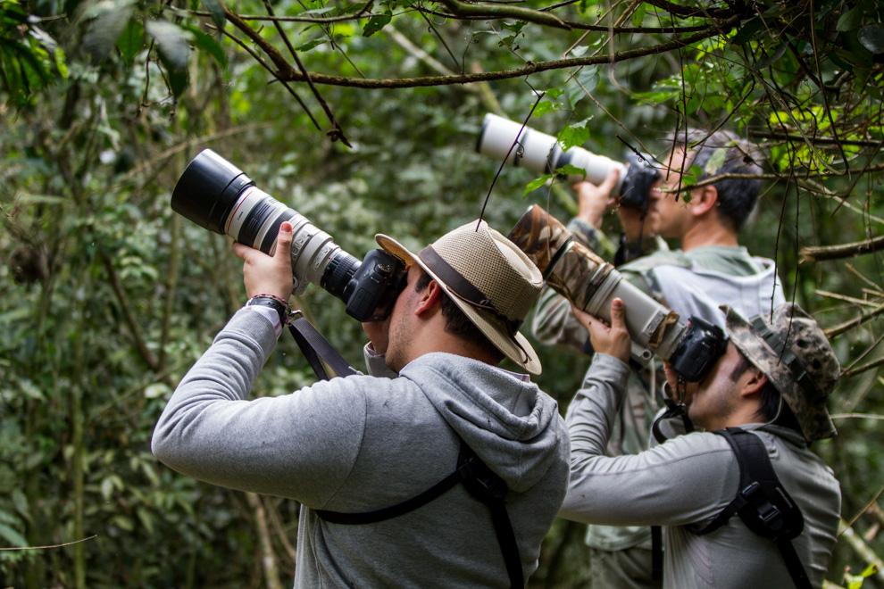 La observación de aves, también llamada avistamiento de aves o, empleando sus términos con que es conocida en idioma inglés, birding o birdwatching, se refiere a una actividad centrada en la observación y el estudio de las aves silvestres. Esta afición es más bien desarrollada como ocio, y se basa en el arte de reconocer las distintas especies de aves por su plumaje o canto. (Tetsu Espósito)