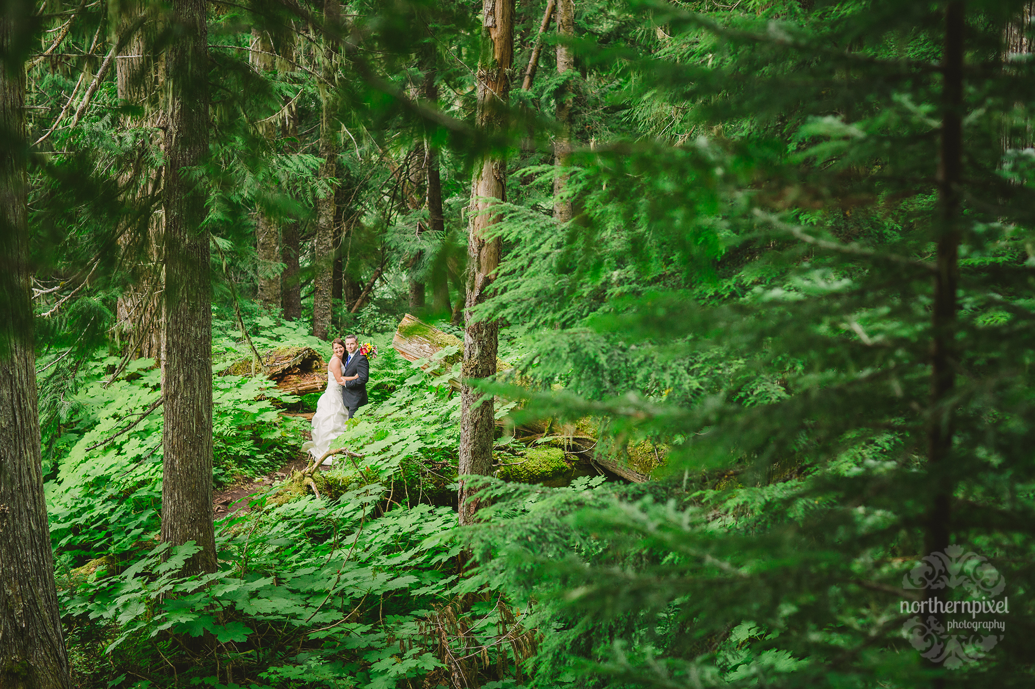 Ancient Forest Wedding - Prince George British Columbia