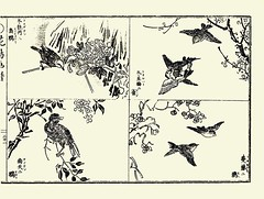 Right top - Plum and Eurasian tree sparrow; Right bottom - Japanese bittersweet and Eurasian siskin; Left top - Tree peony and black bulbul; Left bottom - Heavenly bamboo and brown-eared bulbul