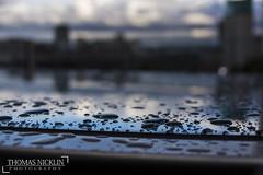 Macro Rain water-1