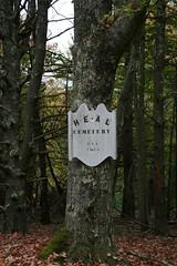 Heal cemetery 2