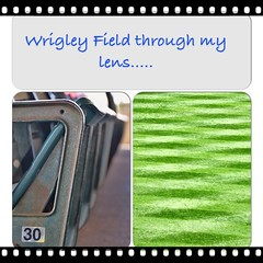 ...not what everyone else sees. #baseball #stadium #wrigley #field #Chicago #usa #turf #seats #sports