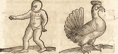 """Image from page 672 of """"Prodigiorvm ac ostentorvm chronicon : quae praeter naturae ordinem, motum, et operationem, et in svperioribus & his inferioribus mundi regionibus, ab exordio mundi usque ad haec nostra tempora, acciderunt ..."""" (1557)"""