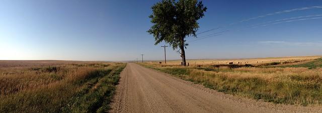 Dakota Lone Tree Panorama
