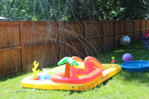 Exciting Backyard Water Park
