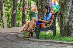 Girl Reading in the Park Updated