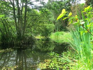 St Andrews Botanic Garden bot 2
