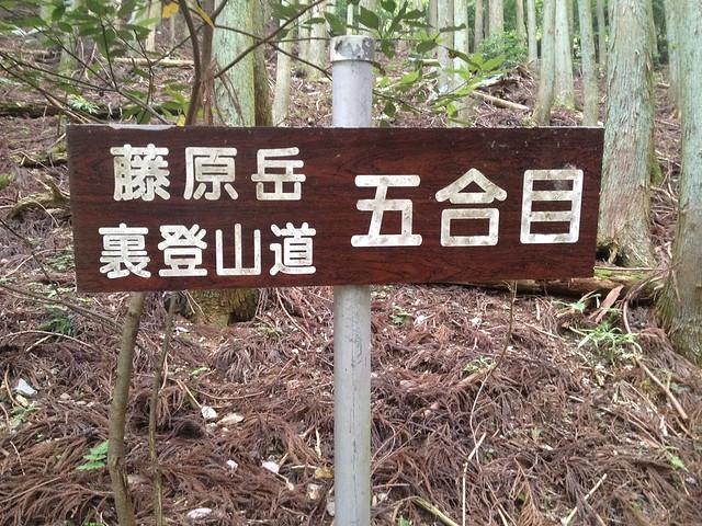 藤原岳 裏道(聖宝寺道) 五合目