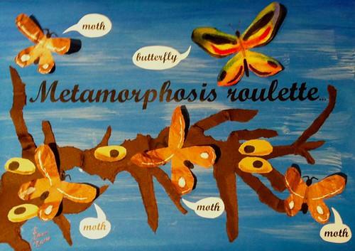 Week 34 Butterfly