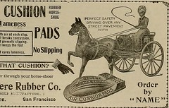 """Image from page 401 of """"Breeder and sportsman"""" (1882)"""