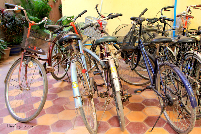 Siem Reap Cambodia Biking