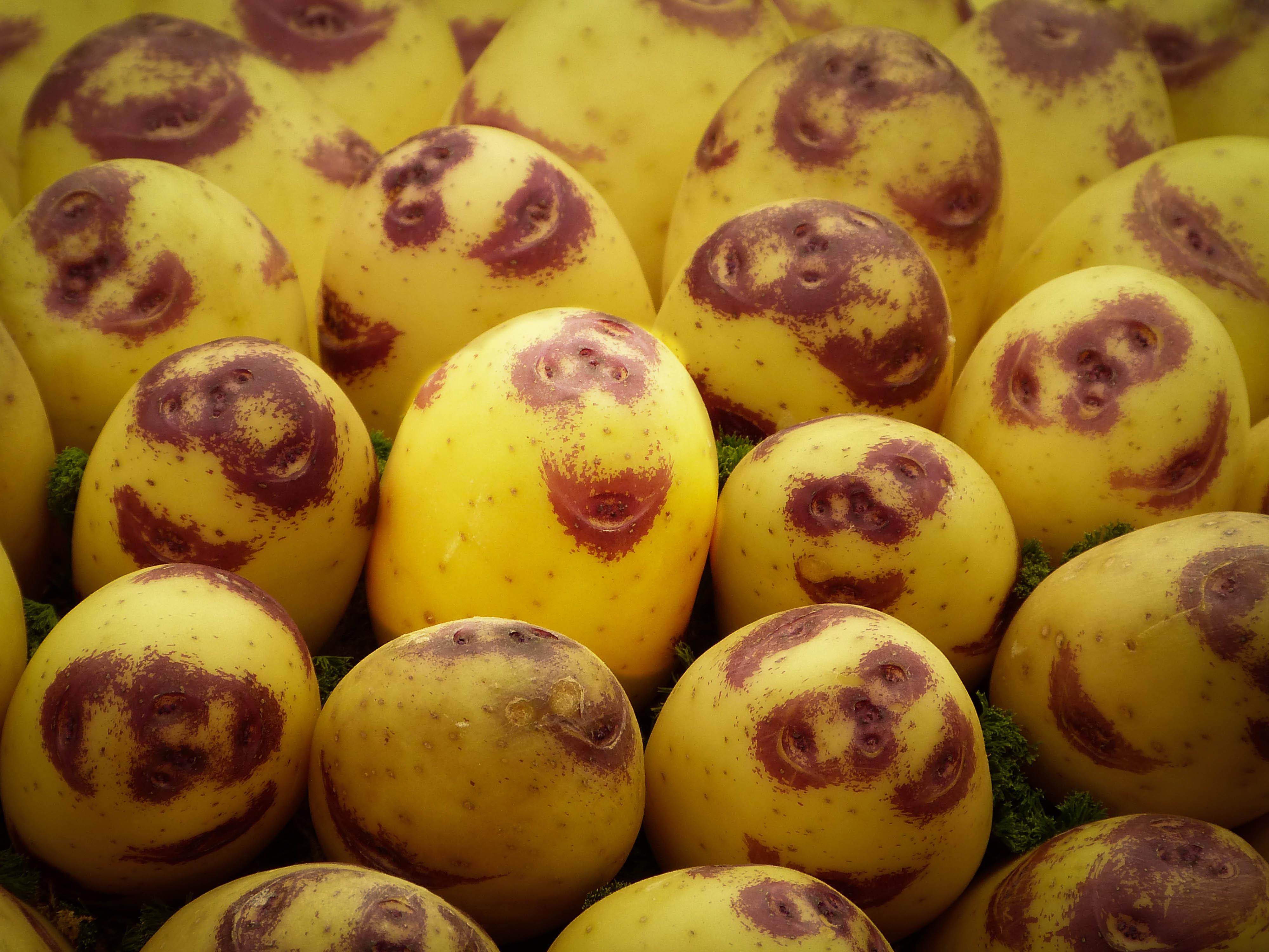foto graciosa de comida patatas sonrientes