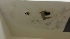 Ceiling leak Sept. 10 2014