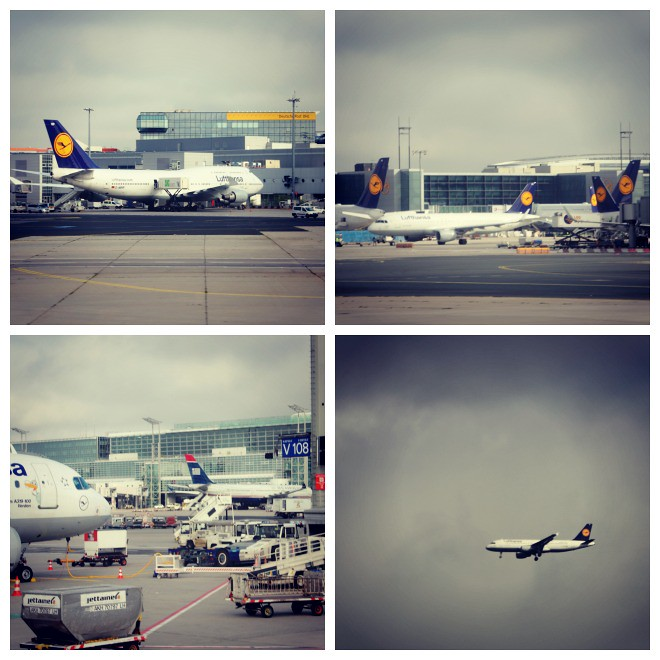 Lufthansa at Frankfurt Main Airport