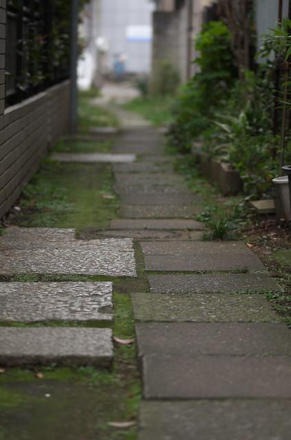 東京路地裏散歩 谷中 2014年9月27日