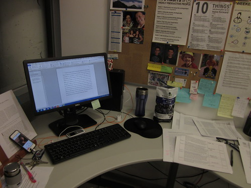 Working at my CIDE Region Centro office