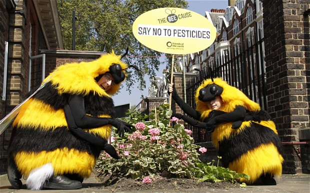 bee_protest