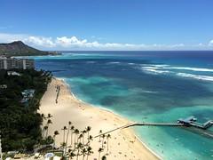 #postcard from Waikiki